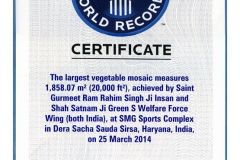 largest-vegetable-mosaic-world-record-25-march-2014